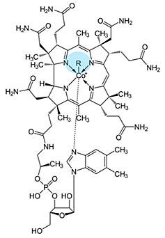 Grafik: allgemeine Strukturformel von Cobalaminen (Vitamin B12).
